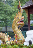 Ornate golden dragon — Stock Photo