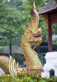 Ornate golden dragon — Stock Photo