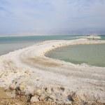 Dead Sea — Stock Photo #19002539