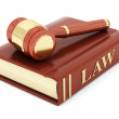 Beautiful image of judicial attributes — Stock Photo