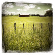 Barn in field - Stock Photo