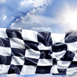 checkered flag — Stock Photo #23595489