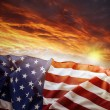 American flag — Stock Photo #28187499