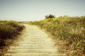 Beach trail — Stock Photo