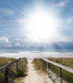 Beach view — Stock Photo