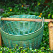 Plastic Bin Garden — Stock Photo