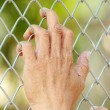 Need Free Hands — Stock Photo