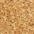 Cork Wood Texture — Stock Photo