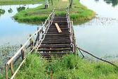 деревянный мост — Стоковое фото