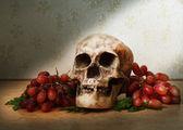 плоды винограда и череп — Стоковое фото