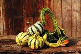 Fancy Pumpkin Art — Stock Photo