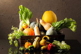 Mixed Vegetable — Stock Photo