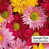 Color flowers — Vector de stock