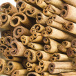 Stock Photo: Cinnamon sticks close up