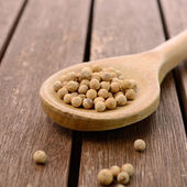 White pepper — Stock Photo
