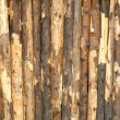 Royalty-Free Stock Photo: Natural grunge wooden