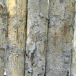 Natural grunge wooden — Stock Photo