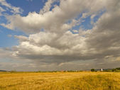 Golden wheat field and cloudy sky — Stock Photo