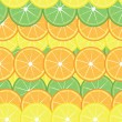 Slices of lemon and orange — Stock Vector
