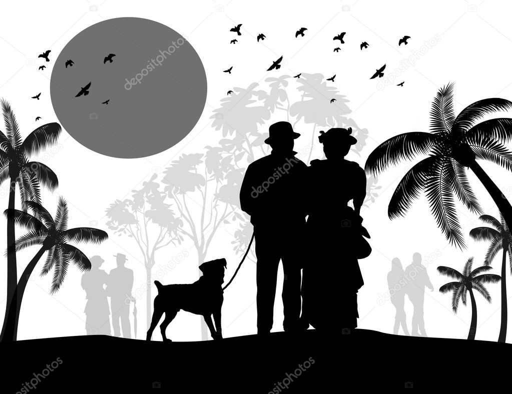 Silhouette Images Stock Photos amp Vectors  Shutterstock