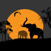 Silhouette view of elephants at night — Stock Vector