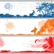Tropical summer banners — Stock Vector