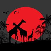 Giraffe family silhouettes in Africa — Stock Vector