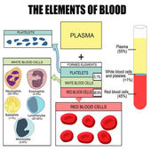 The elements of blood — Stock Vector
