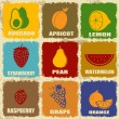 Vintage fruits icons — Stock Vector