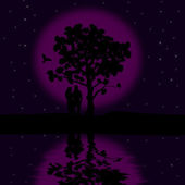 The loving couple on the beautiful night — Stock Vector