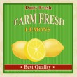Stock Vector: Vintage farm fresh lemons poster