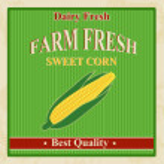 Vintage farm fresh sweet corn poster — Stock Vector #27475033