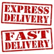 Express delivery and fast delivery stamps — Stock Vector