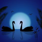 Twee zwanen onder de blauwe zonsondergang — Stockvector