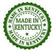 Made in Kentucky stamp — Stock Vector