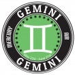 Gemini zodiac  label — Stock Vector