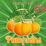Vintage pumpkins poster — Stock Vector #34908099