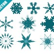 Set of vectors snowflake — Stock Vector