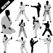 Karate fighters silhouettes — Stock Vector