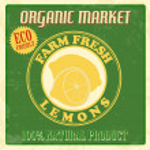 Vintage lemons poster — Stock Vector