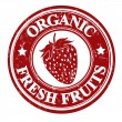Strawberry fruit stamp or label — Stock Vector
