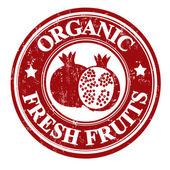 Pomegranate fruit stamp or label — Vecteur