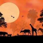 Sunset Safari — Stock Vector #36888701