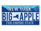An imitation New York license plate — Stock Vector