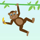 Monkey on liana — Stock Vector