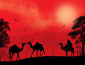 Bedouin and camels during the red night — Stock Vector