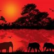 силуэт слонов в Африке — Cтоковый вектор