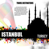 Istanbul grunge poster — Stock Vector