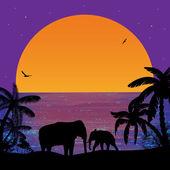 Elefantes na sunset, perto de ocean — Vetor de Stock
