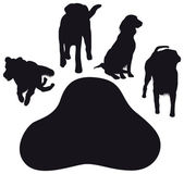 Dog paws — Stock Vector
